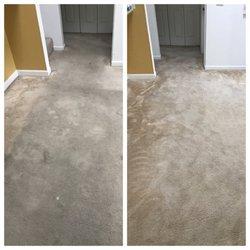 Drummond Carpet Upholstery Care 12 Fotos Y 16 Resenas
