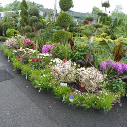 Garden World Florist 2019 All You Need To Know Before