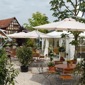 hirschgarten crailsheim