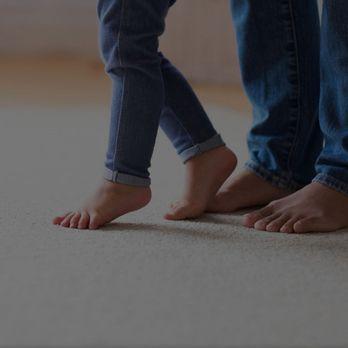Ecodry Ny Carpet Cleaning