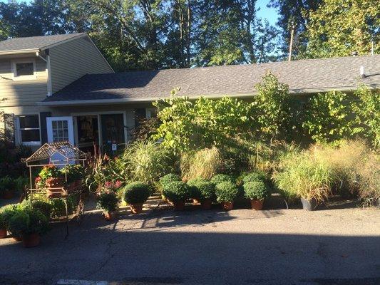 Millstone Lawn Garden Nurseries Gardening 1 Pierson Rd Maplewood Nj Phone Number Yelp