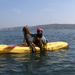 La Jolla Sea Cave Kayaks 2019 All You Need To Know Before