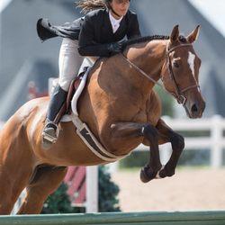 Horseback Riding in Pickering - Yelp