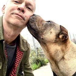 Best Cheap Pet Grooming Near Me September 2020 Find Nearby Cheap Pet Grooming Reviews Yelp