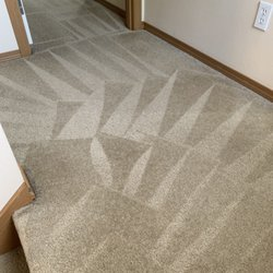 Best Professional Carpet Cleaners Near Me August 2019