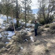 Photo of Angeles Crest Highway - La Canada, CA, United States. Snow by the big pines