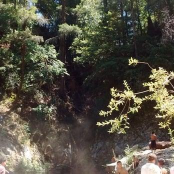 Garden Of Eden Henry Cowell Redwoods State Park 92 Fotos 81