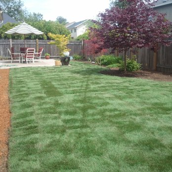 Better Lawns And Gardens Landscaping, Better Lawns And Gardens Eugene