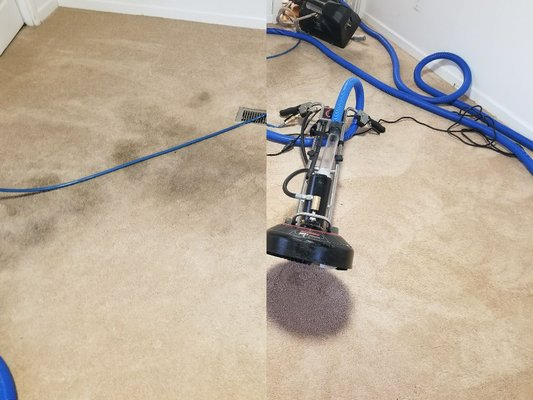 Drummond Carpet Upholstery Care Champaign Il Carpet Rug