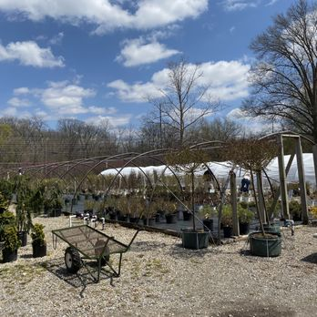 Eagle Creek Nursery Landscape 21