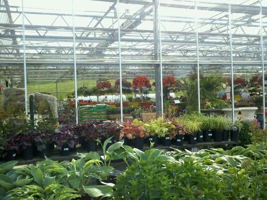 Potomac Garden Center 8710 Fingerboard