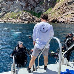 Scuba Diving in Bonita - Yelp