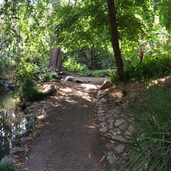 Ucla Mildred E Mathias Botanical Garden 274 Photos 84 Reviews