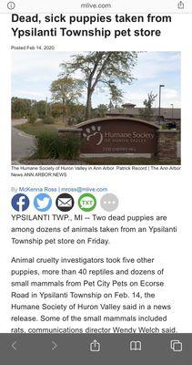 Pet City Pets 1254 Ecorse Rd Ypsilanti Mi Pet Grooming Mapquest