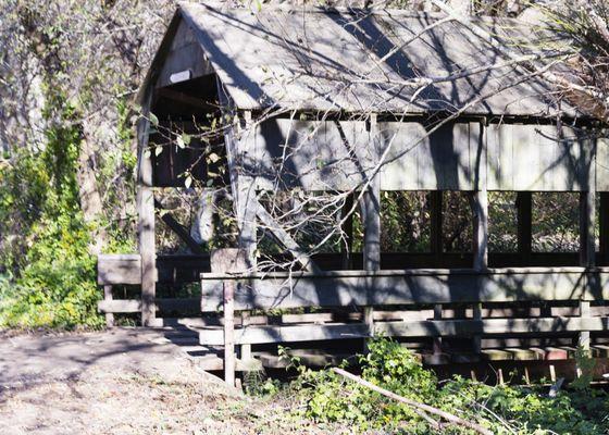 Santas Tree Farm and Village - 83