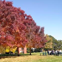 Elementary Schools in Littleton - Yelp