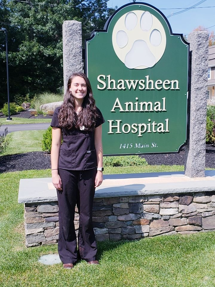 Shawsheen Animal Hospital Updated Covid 19 Hours Services 29 Photos 34 Reviews Veterinarians 1415 Main St Tewksbury Ma Phone Number Yelp