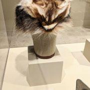 Photo of Bowers Museum - Santa Ana, CA, United States. Davy Crockett's Coonskin Cap