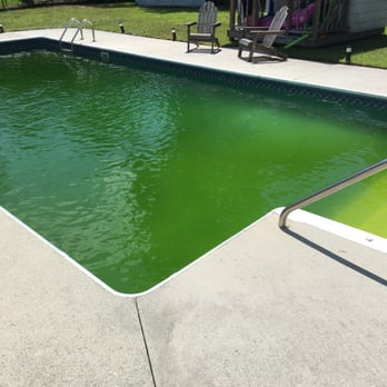 This is what my pool looks like while under a pool ...