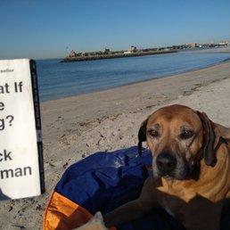 Photo of Plumb Beach - Brooklyn, NY, United States