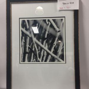 Bellissima Art and Custom Framing on Yelp