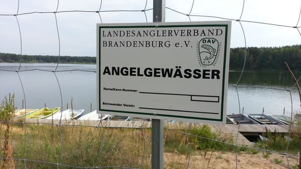 Bernsteinsee brandenburg