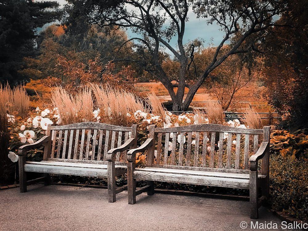Photo of Chicago Botanic Garden - Glencoe, IL, United States. Your never alone