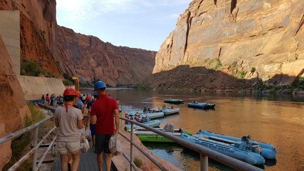 Colorado River Discovery >> Colorado River Discovery Closed 110 Photos 82 Reviews