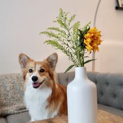 Top 10 Best Succulent Florist Near Silver Lake Los Angeles Ca Last Updated July 2020 Yelp
