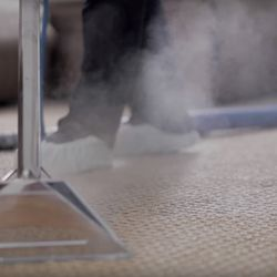 Dazzle Carpet Cleaning - See 13 Photos