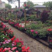 Gardens In A Flowerpot Closed 24