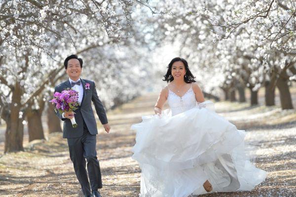 HOLLYWOOD BRIDAL - 335 Photos & 211 Reviews - Bridal - 9545 Bolsa Ave,  Westminster, CA - Phone Number - Yelp