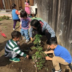 Preschools In Cupertino Yelp