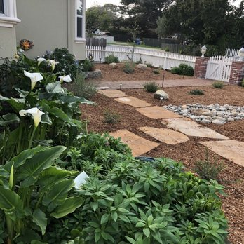 All Things Green Landscape Services 10 Photos 11 Reviews Landscaping Marina Ca Phone Number Yelp