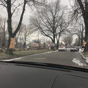 Photo of Heidelberg Project - Detroit, MI, United States. You can feel the heaviness