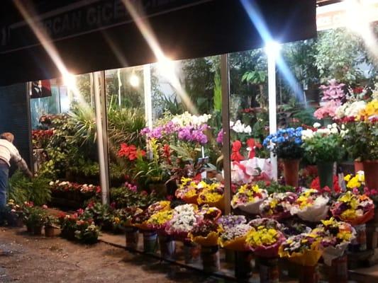 ÇIÇEKÇILER SOKAĞI - Florists - Sakarya Cad., Ankara, Turkey - Yelp