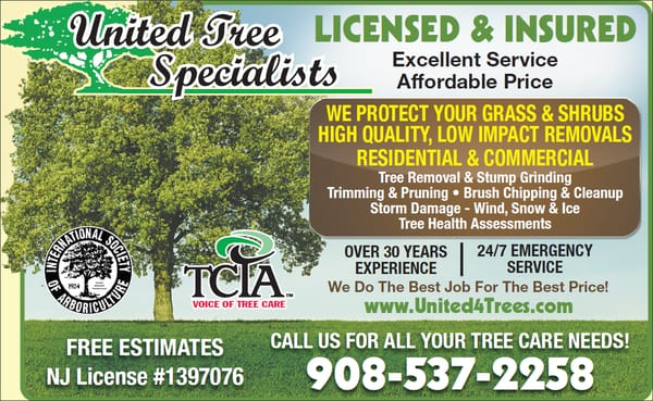 United Tree Specialists 8 Johnson Ave Hampton Nj Tree Services Mapquest