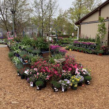 Black Forest Nursery Garden Center
