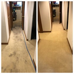 Best Carpet Cleaning Near Me April 2019 Find Nearby