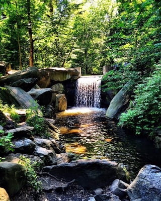 Waterfalls in Central Park - 116 Photos & 35 Reviews - Parks ...