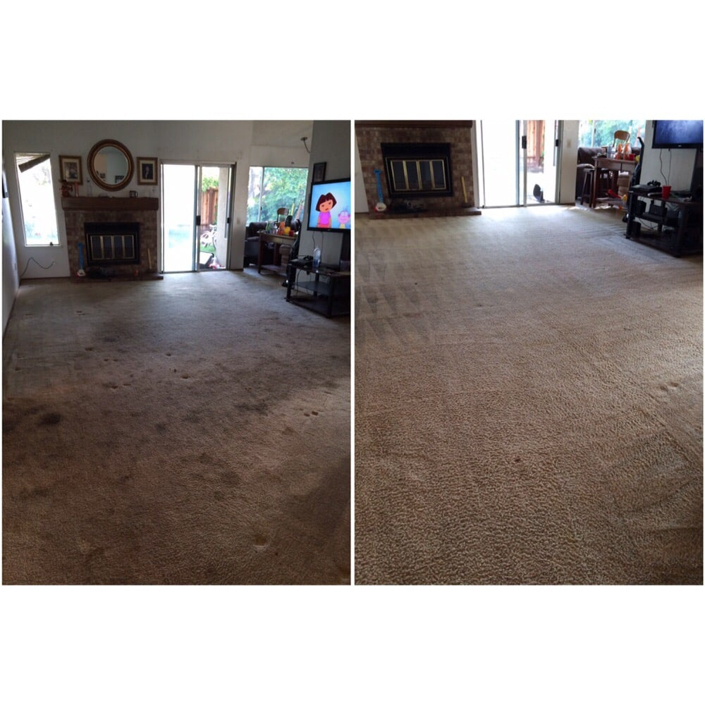 World Class Carpet Cleaning - 150