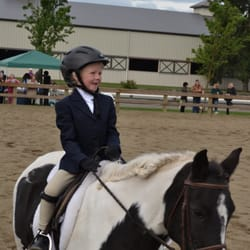 Best Horse Trainers Near Me August 2019 Find Nearby