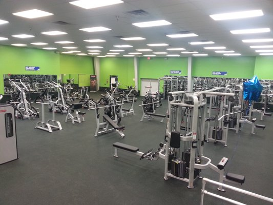 Zone Fitness Club 4802 Gunn Hwy Suite 142 Tampa Fl Health Clubs Gyms Mapquest
