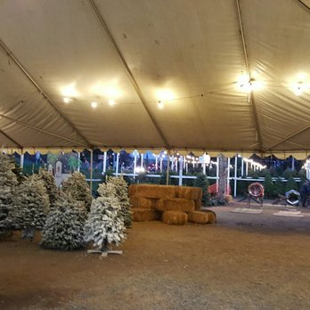 Pinery Christmas Trees - Updated COVID