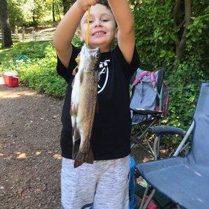 Smith S Mt St Helena Trout Farm Hatchery Temp Closed 44 Photos 31 Reviews Fishing 18401 Ida Clayton Rd Calistoga Ca Phone Number