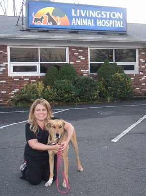 Livingston Animal Hospital 619 W Mount Pleasant Ave Livingston, NJ ...