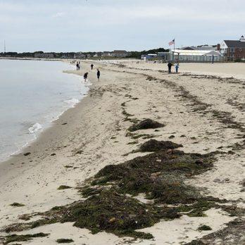The Ocean Club On Smugglers Beach 42