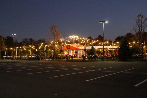 TROSA Christmas Tree Lot 8160