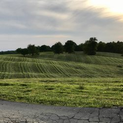 Landscaping In Lawrenceburg Yelp