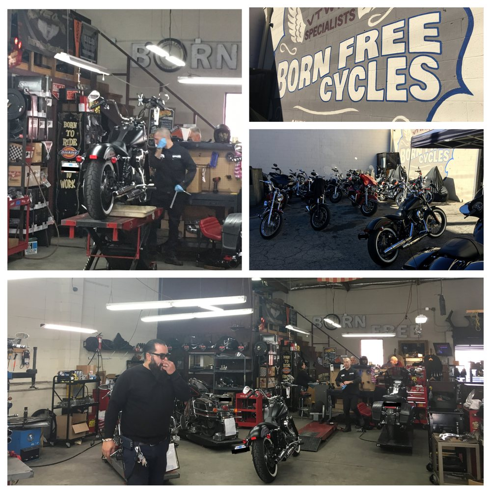 Born Free Cycles Updated Covid 19 Hours Services 50 Photos 86 Reviews Motorcycle Repair 110 W Burbank Blvd Burbank Ca Phone Number Yelp